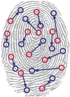Illinois Court Says Biometric Fingerprint is Violation of Privacy, Even Without Injury: Data Privacy Trends - CloudNine